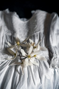 Sally Mundy CHILD'S WHITE ANTIQUE DRESS WITH FLOWERS Miscellaneous Objects