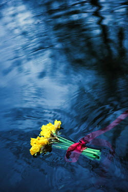 Magdalena Russocka bouquet of daffodils floating on water