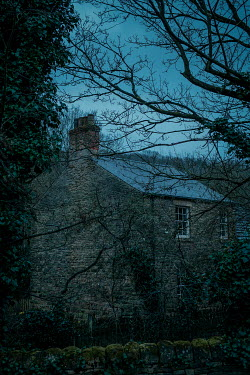 Shelley Richmond OLD STONE COTTAGE WITH TREES AT DUSK Houses