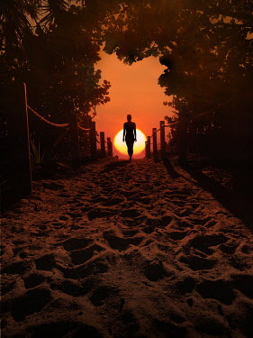 Terry Bidgood SILHOUETTED WOMAN ON SANDY PATH AT SUNSET Women