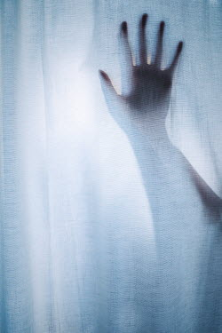 Shelley Richmond Woman's hand in window with curtains