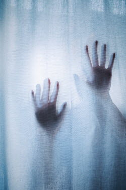 Shelley Richmond Woman's hands in window with curtains