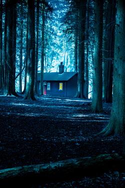 Stephen Mulcahey LIGHT IN WINDOW OF CABIN IN FOREST Houses