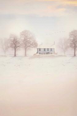 Lee Avison cottage in winter snow