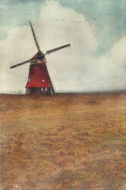 Anna Buczek Windmill in field
