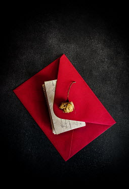 Jane Morley LETTER WITH DRIED FLOWER IN RED ENVELOPE Flowers