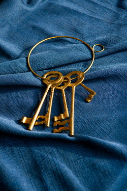 Mohamad Itani Antique keys on blue fabric