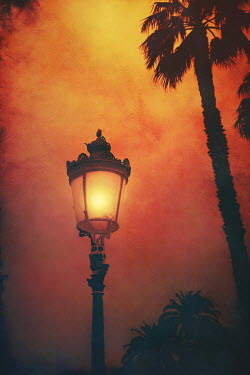 Irene Lamprakou Street light by palm tree at sunset Miscellaneous Objects