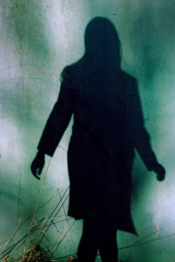 Ute Klaphake Shadow of young woman on green wall Women