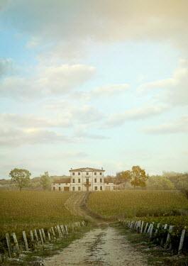 Drunaa Grand house in vineyard