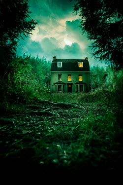 Stephen Mulcahey A eerie looking house in a forest Houses