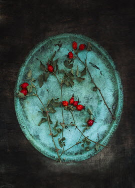 Magdalena Wasiczek red berries on old green tray Flowers