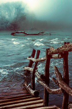 Dragan Todorovic COLLAPSED BRIDGE WITH BRANCH IN FOGGY RIVER Lakes/Rivers