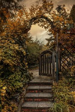 Jaroslaw Blaminsky OPEN GARDEN GATE WITH AUTUMN LEAVES Gates