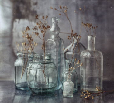 Andreeva Svoboda CLOSE UP OF GLASS BOTTLES WITH GRASSES Miscellaneous Objects