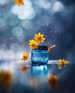 Ashraful Arefin JAR WITH SCATTERED YELLOW FLOWERS AND RAINDROPS Flowers