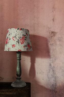 Maria Petkova Floral pattern lamp