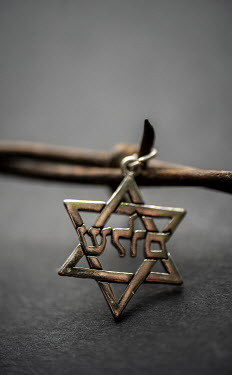 Stephen Mulcahey JEWISH PENDANT ON BARBED WIRE Miscellaneous Objects