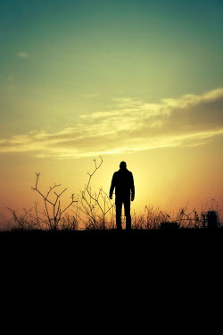 Tim Robinson SILHOUETTED MAN STANDING IN FIELD AT SUNSET Men