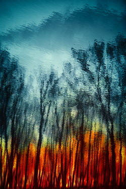 Magdalena Russocka fire in forest reflected in water