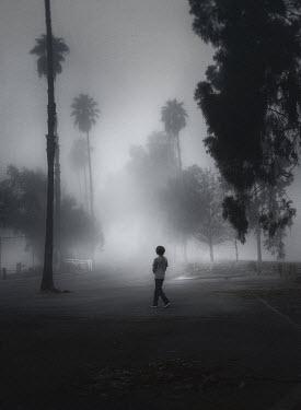 Jessica Drossin LITTLE BOY WALKING IN STREET WITH PALM TREES Children