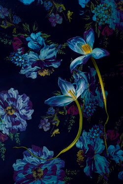Magdalena Wasiczek BLUE TULIPS AND FLOWER PATTERN Flowers