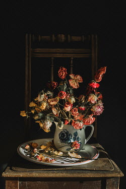Magdalena Wasiczek withered roses in jug on chair Flowers