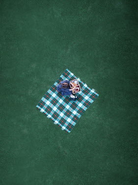 Mary Wethey Girl sitting on picnic blanket from above