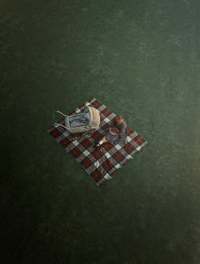 Mary Wethey Girl sitting on picnic blanket with stroller