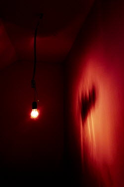 Maria Petkova Light bulb and red wall