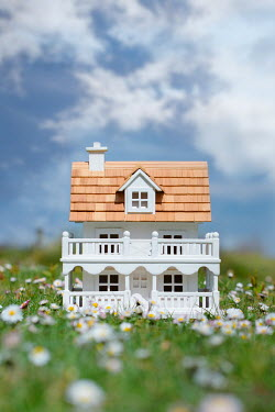 Magdalena Wasiczek MINIATURE HOUSE IN SUMMERY FIELD OF DAISIES Miscellaneous Objects