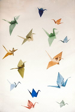 Des Panteva COLOURFUL FLYING PAPER BIRDS Miscellaneous Objects