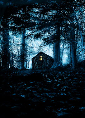 Stephen Mulcahey LIGHT IN HOUSE IN FOREST AT DUSK Houses
