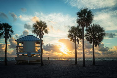 Evelina Kremsdorf Palm trees and lifeguard hut at sunset in Key Biscayne, Miami