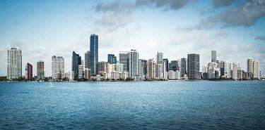 Evelina Kremsdorf Cityscape of Miami, Florida