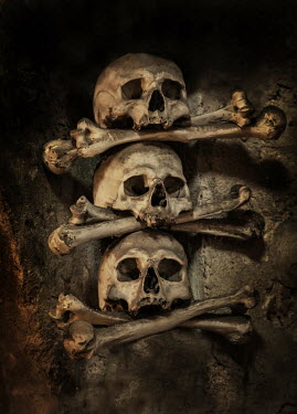 Jaroslaw Blaminsky Skulls and bones in wall