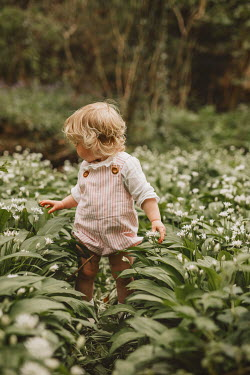 Shelley Richmond Toddler walking in meadow