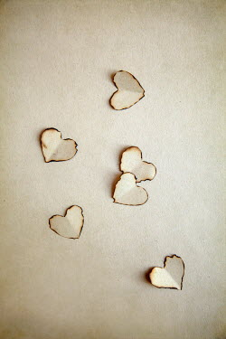 Miguel Sobreira BURNT HEART SHAPES ON PAPER Miscellaneous Objects