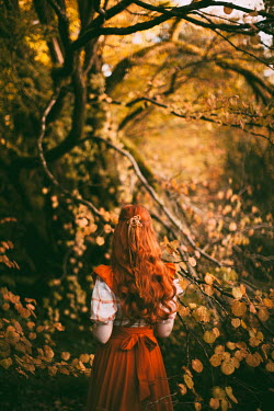 Rebecca Stice GIRL WITH RED HAIR IN AUTUMN COUNTRYSIDE Women