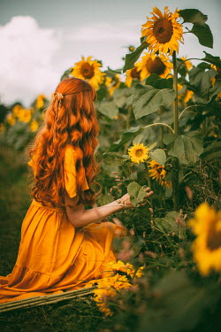 Rebecca Stice GIRL WITH RED HAIR KNEELING IN SUNFLOWER FIELD Women