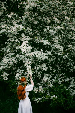 Rebecca Stice GIRL WITH RED HAIR BY TREE WITH WHITE FLOWERS Women