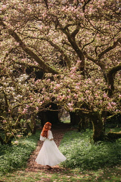 Rebecca Stice WOMAN IN WHITE BY PINK MAGNOLIA TREE Women