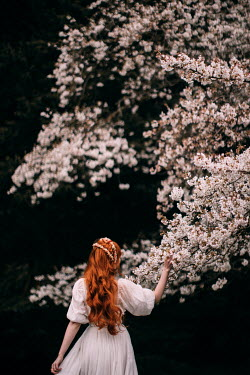 Rebecca Stice WOMAN WITH RED HAIR TOUCHING TREE WITH BLOSSOM Women