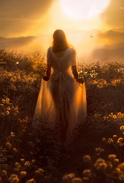 Jessica Drossin WOMAN IN SILKY DRESS IN COUNTRYSIDE AT SUNSET Women