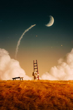 Hardi Saputra SPACEMAN WITH LADDER WATCHING ROCKET AND PLANET Miscellaneous Objects