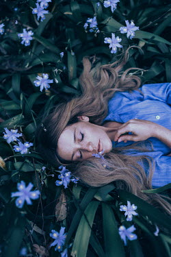 Rosie Hardy WOMAN LYING ON BLUE FLOWERS FROM ABOVE OUTDOORS Women