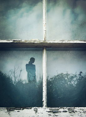 Mark Owen Silhouette of young woman and shrub in window