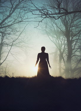 Mark Owen Silhouette of woman on hill under trees
