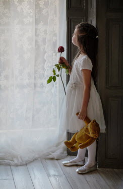 Nikaa Girl with rose and teddy bear by window