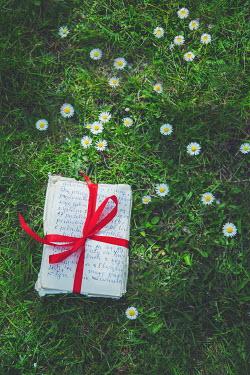 Joanna Czogala Bundle of letters on grass